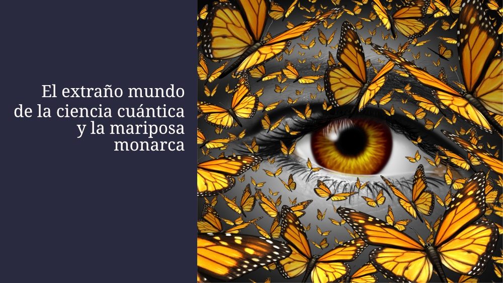 El extraño mundo de la ciencia cuántica y la mariposa monarca